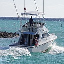 Offshore Sports Fishing Charters