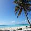 Saona Island Tour